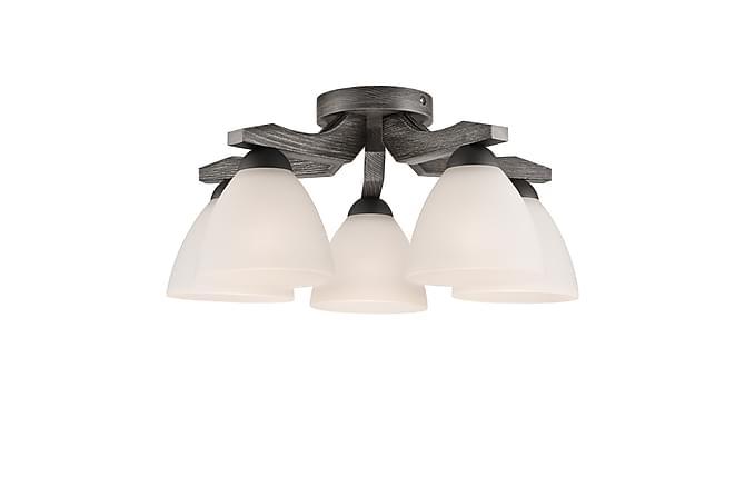 Alejo Spotlight 5L - Grafit - Belysning - Inomhusbelysning & Lampor - Taklampa