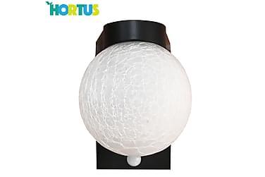 NSH Hortus Solcellampa Kopul med Sensor