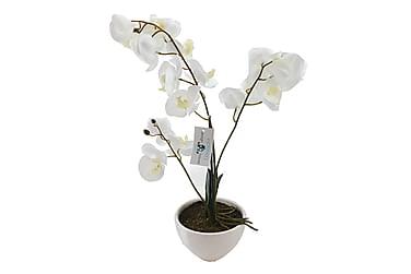 Orkidé Artificiell med Kruka 58 cm