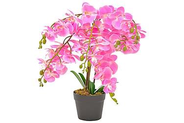 Konstväxt Orkidé med kruka 60 cm rosa