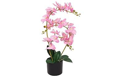 Konstväxt Orkidé med kruka 65 cm rosa