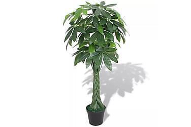 Konstväxt Pengaträd (Pachira aquatica) med kruka 145 cm grön
