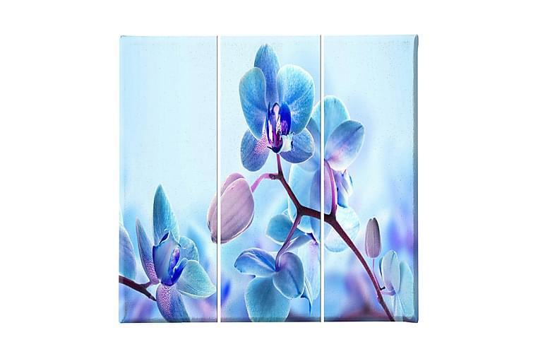 Blommor Ramverk - Homemania - Heminredning - Väggdekor - Canvastavlor