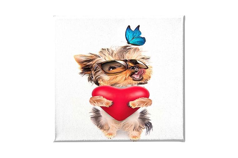 Hund Ramverk - Homemania - Heminredning - Väggdekor - Canvastavlor