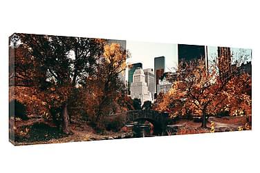 Tavla Canvas NY Central Park