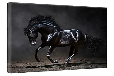 Tavla Canvas Silver Black Horse