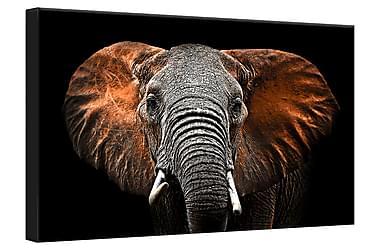 Tavla Canvas Silver Red Elephant