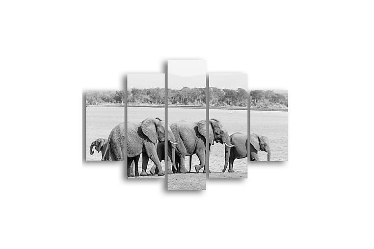 Elefanter Väggramverk Svartvit - Homemania - Heminredning - Väggdekor - Plåtskyltar