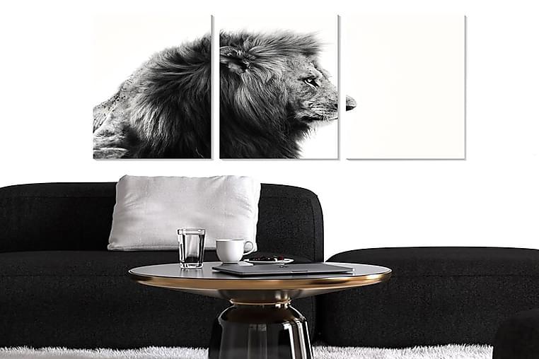 Canvastavla Animal 3-pack Flerfärgad - 20x50 cm - Heminredning - Väggdekor - Posters