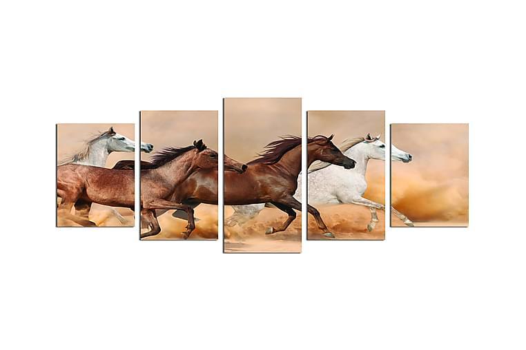 Canvastavla Animals 5-pack Flerfärgad - 20x60 cm - Heminredning - Väggdekor - Posters