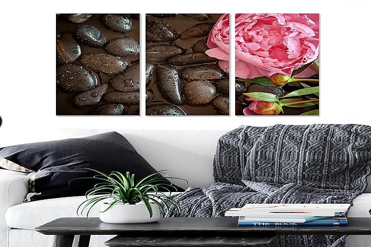 Canvastavla Floral 3-pack Flerfärgad - 20x50 cm - Heminredning - Väggdekor - Posters