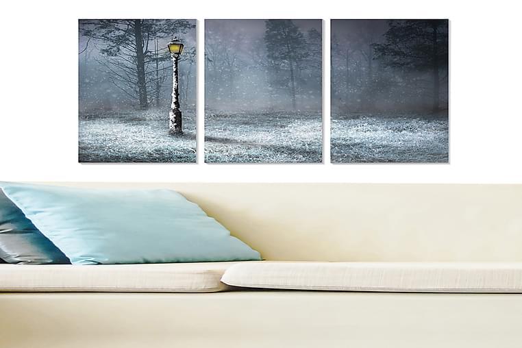 Tavla Scenic 3-pack Flerfärgad - 20x50 cm - Heminredning - Väggdekor - Posters