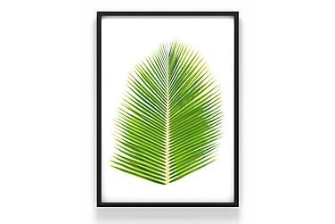 Växt Poster
