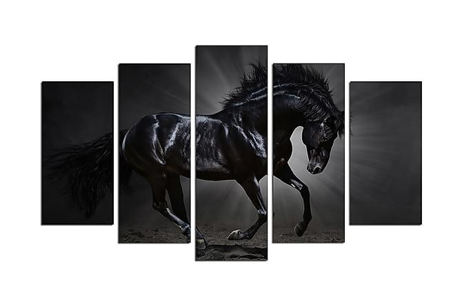 Decorative MDF Painting (5 Pieces) - Heminredning - Väggdekor - Tavlor & konst