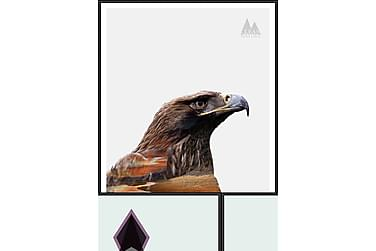 Eagle Tavla