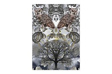 GeoManiac Owls