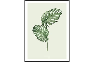 Leaf green Tavla