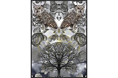Owls Tavla