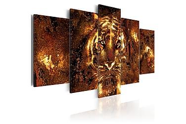 Tavla Golden Tiger 200x100