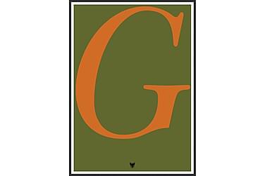 Type-G Tavla