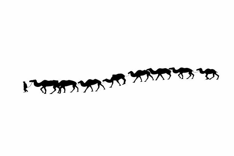 Wall Sticker 90x18 cm Animals - Vinyl/Svart - Heminredning - Väggdekor - Wall stickers