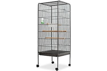 Fågelbur 54x54x146 cm stål svart