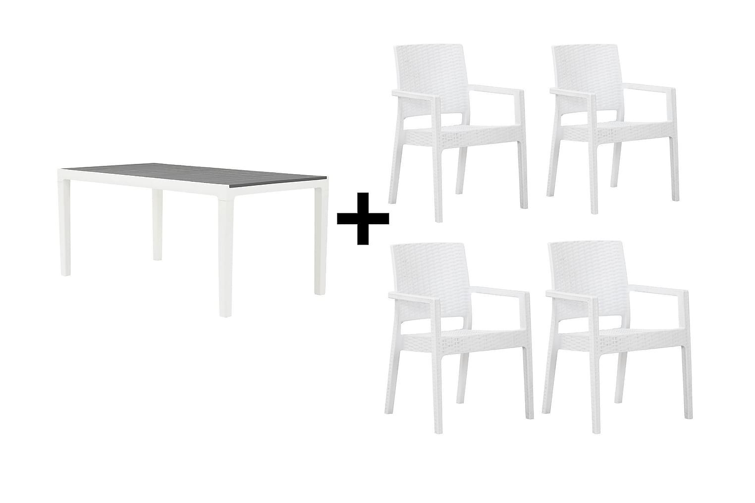 BILBAO Pöytä 160 Harmaa/valkoinen + 4 LEORA Karmituolia Valk