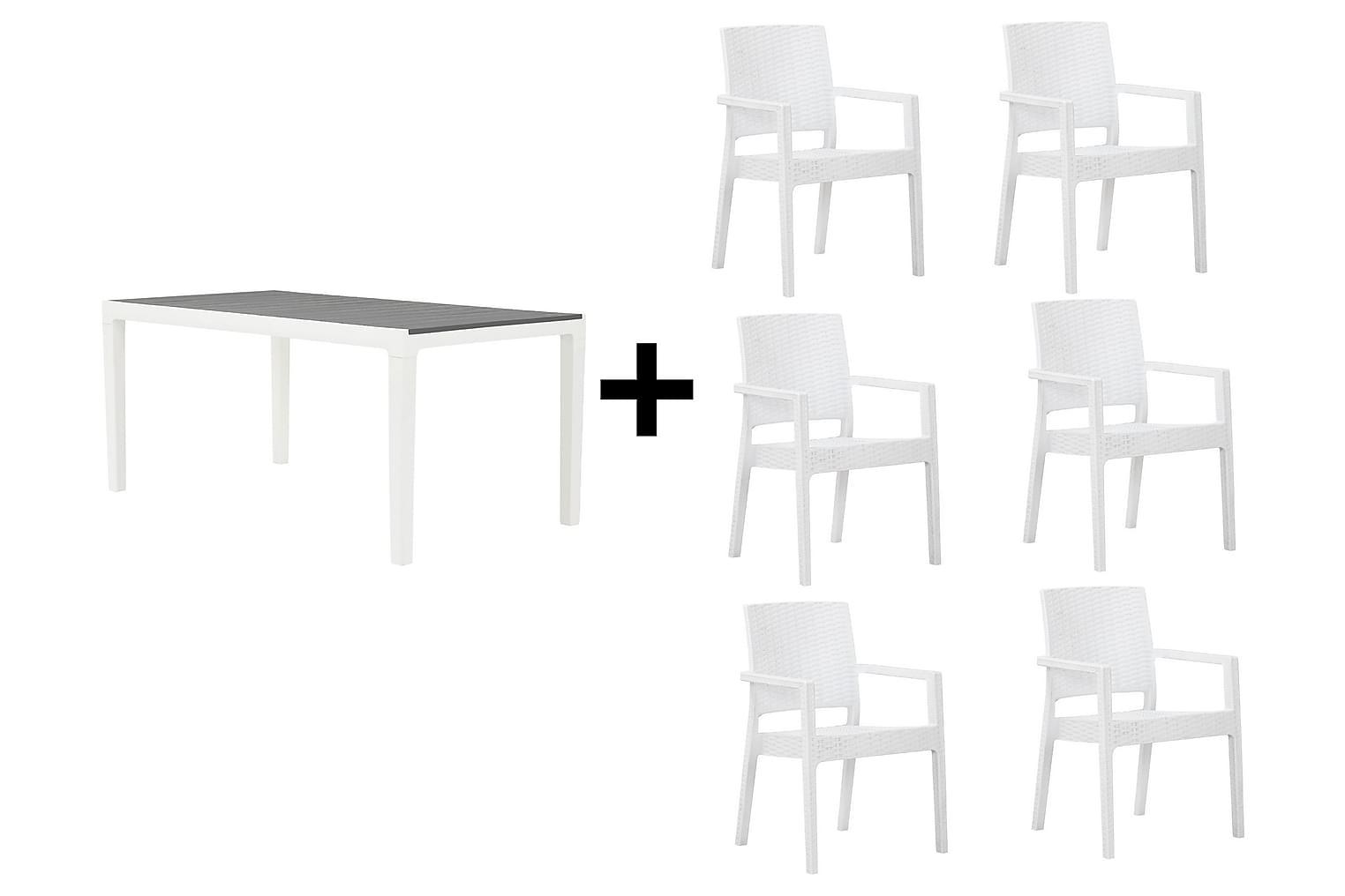 BILBAO Pöytä 160 Harmaa/valkoinen + 6 LEORA Karmituolia Valk