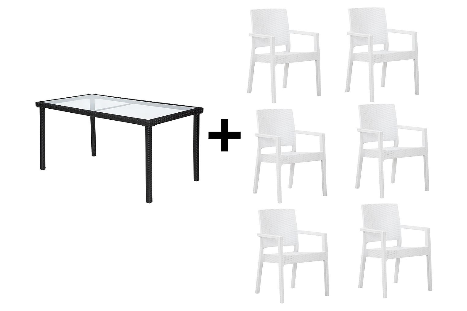 JULITA Pöytä 150 Musta + 6 LEORA Karmituolia Valkoinen