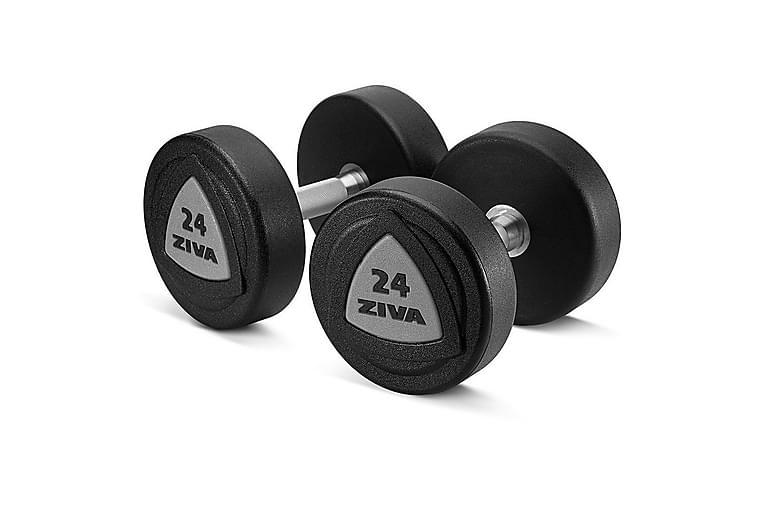 Zvo Urethane Dumbbell Grey - 16 kg - Sport & fritid - Hemmagym - Vikter & skivstänger