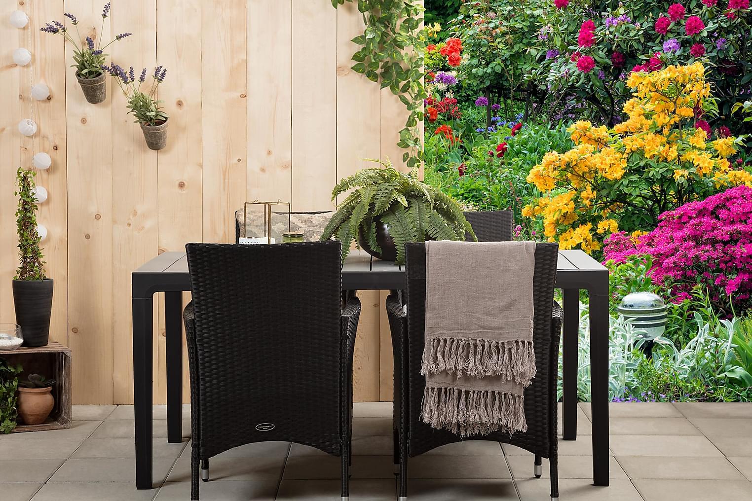 BILBAO 160 Harmaa/Musta + 4 ARUBA Käsinojallista tuolia Must
