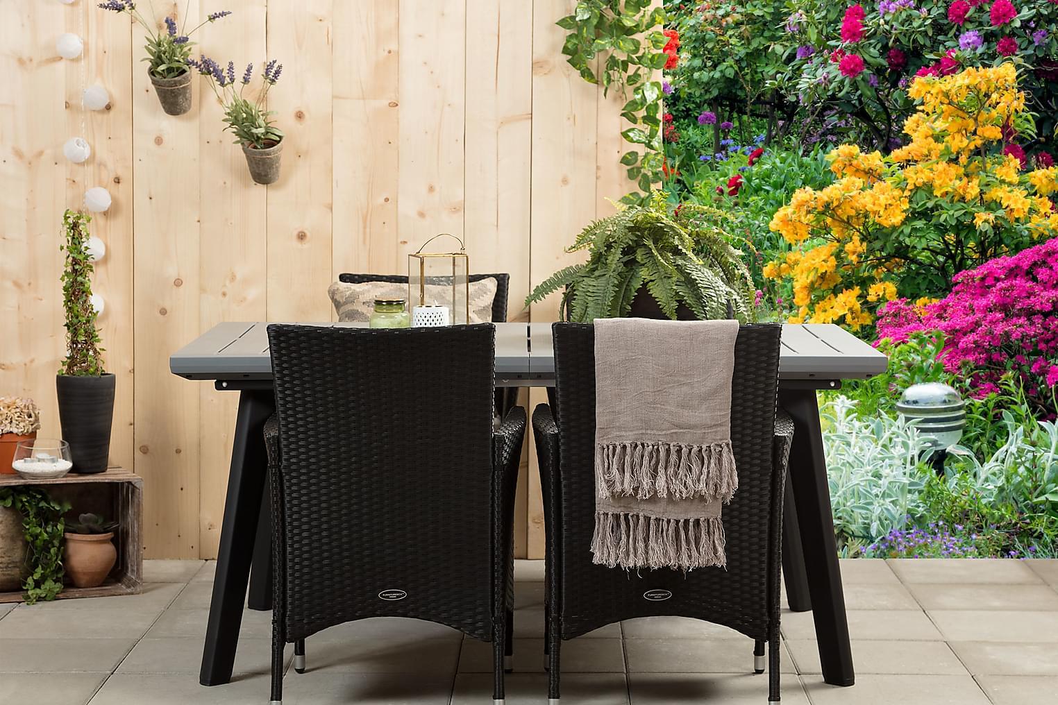 BILBAO 162 Harmaa/Musta + 4 ARUBA Käsinojallista tuolia Must