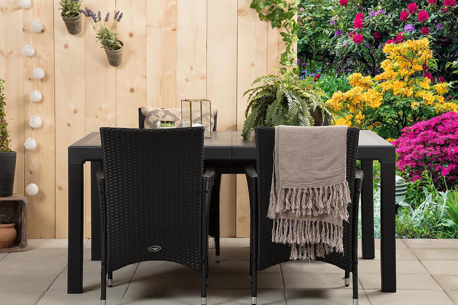 CAYMAN Pöytä 162 Musta + 4 ARUBA Käsinojallista tuolia Musta