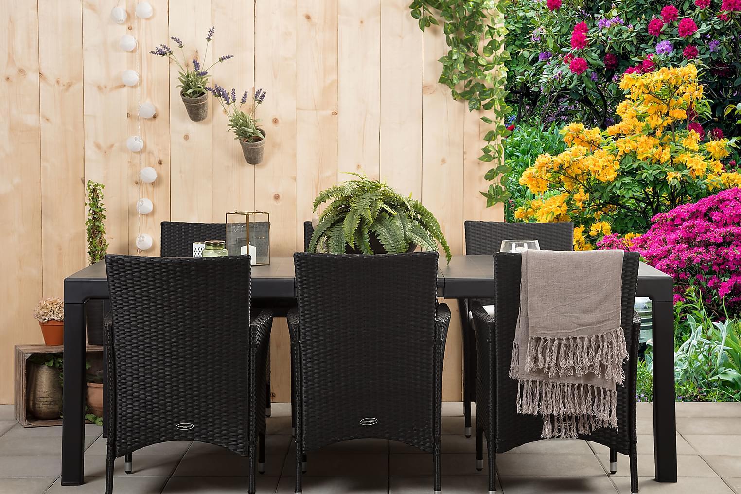 CAYMAN Pöytä 162 Musta + 6 ARUBA Käsinojallista tuolia Musta