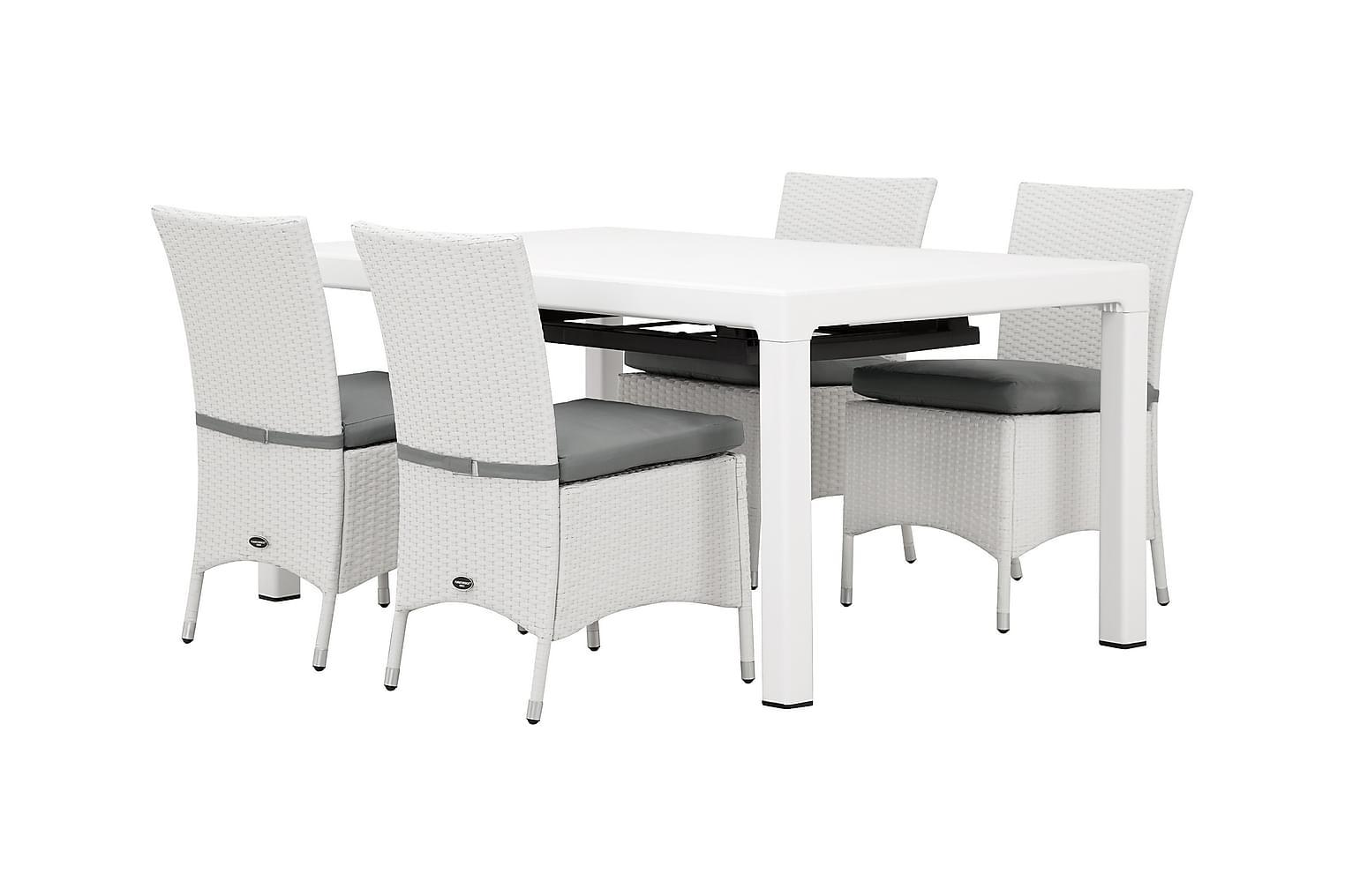 CAYMAN Pöytä 162 Valkoinen + 4 ARUBA Tuolia Valkoinen/Harmaa