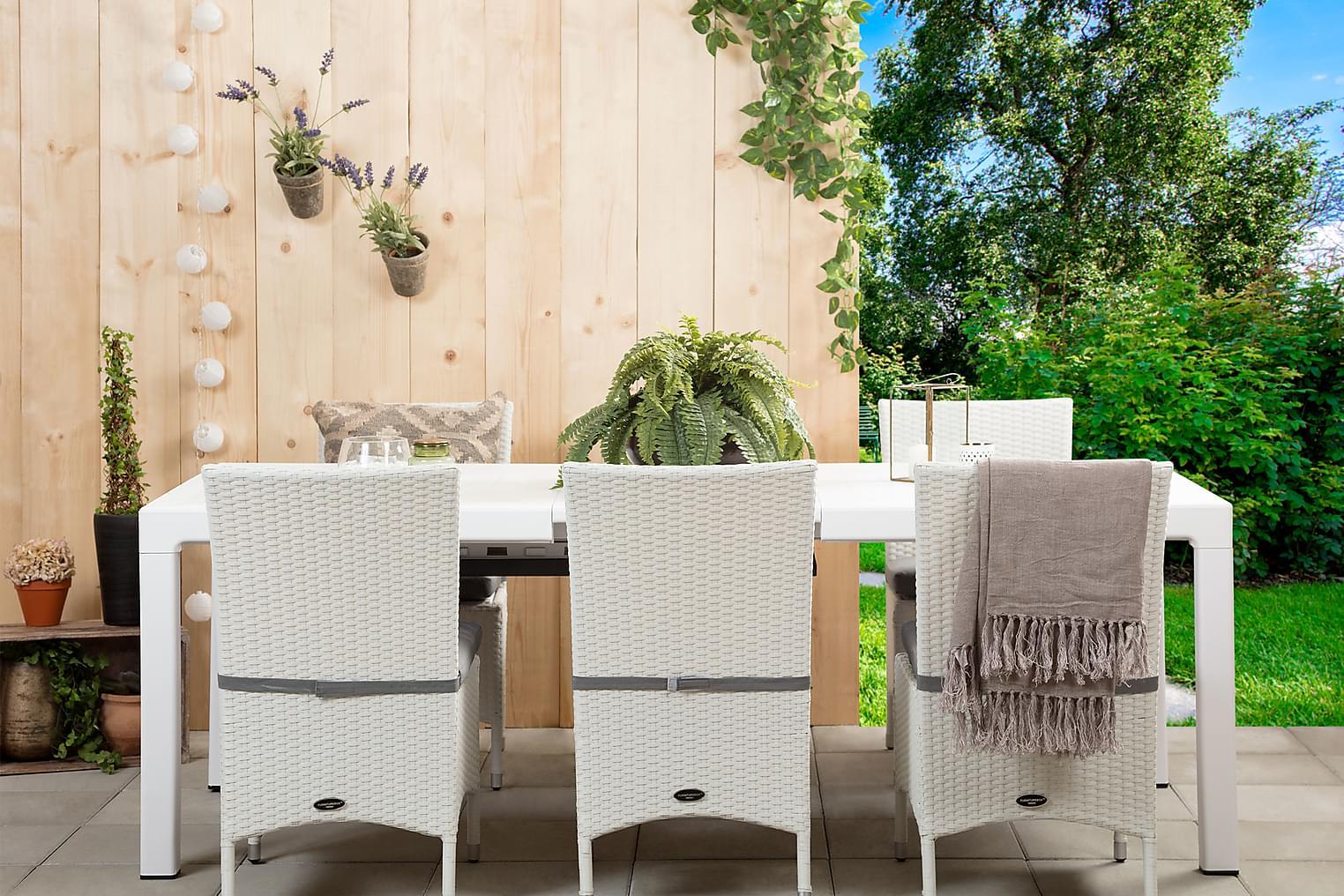 CAYMAN Pöytä 162 Valkoinen + 6 ARUBA Tuolia Valkoinen/Harmaa